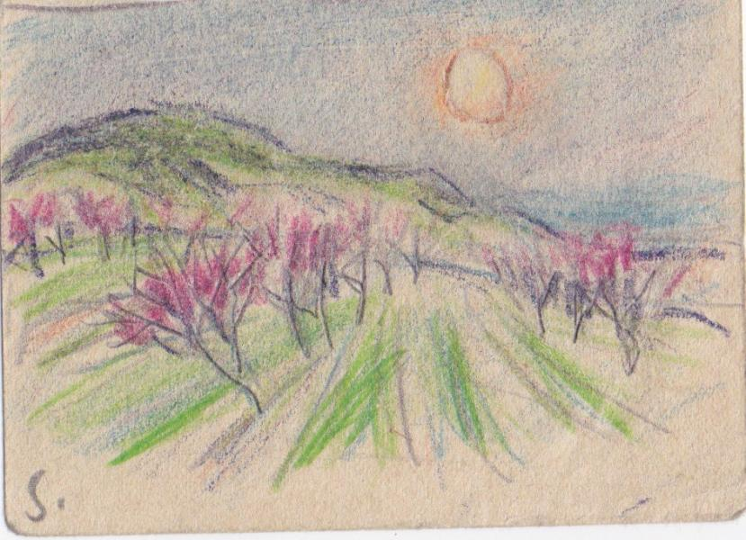 Vallée rose au coucher de soleil