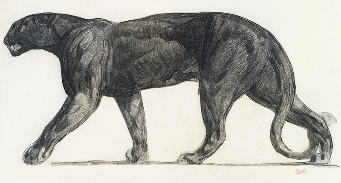 Panthère noire marchant, 1922